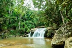 Schöner Mae Sa-Wasserfall bei Chiang Mai, Thailand stockbild