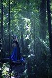Schöner Magier in der mysteriöser dunkler Waldmagischen Atmosphäre fairytale lizenzfreie stockbilder