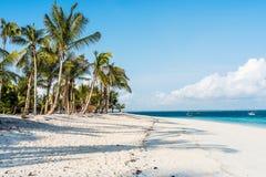 Schöner Meerblick mit Palmen auf einem Strand Lizenzfreie Stockbilder