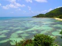 Schöner Meeresboden und Landschaft in Seychelle Stockfotos