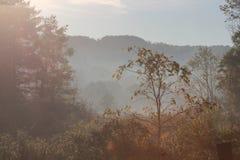 Schöner Morgen-Herbst in Ohio stockfotos