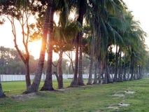 Schöner Morgen herein mit Sonnenaufgang Stockfotos