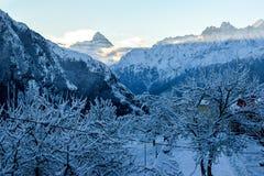 Schöner Morgen mit frischem Schnee und Bergblick Stockfoto
