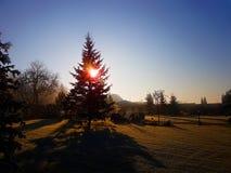 Schöner Morgensonnenaufgang lizenzfreie stockfotos