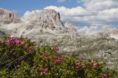 Schöner Mountain View Lizenzfreies Stockbild
