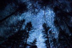Schöner nächtlicher Himmel, Milchstraße, Sternspuren und die Bäume Stockbild