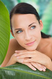 Schöner nackter Brunette, der mit grünen Blättern aufwirft Stockfotografie