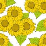 Schöner nahtloser Hintergrund mit Sonnenblumen Lizenzfreie Stockfotos