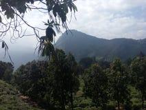 Schöner Naturplatz Ella Sri Lanka stockbild