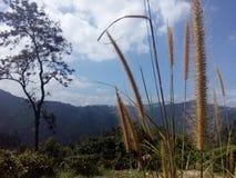 Schöner Naturplatz Ella Sri Lanka lizenzfreies stockfoto