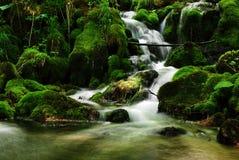 Schöner Naturwasserfallhintergrund Lizenzfreie Stockfotos