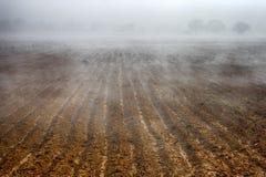 Schöner nebeliger Morgen in der Landschaft (Bauernhoffeld) Lizenzfreies Stockfoto