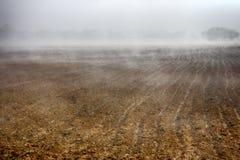 Schöner nebeliger Morgen in der Landschaft (Bauernhoffeld) Lizenzfreies Stockbild
