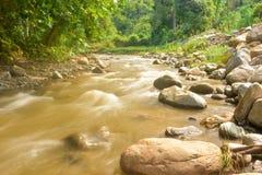 Schöner Paniki-Fluss mit bräunlichem Wasser und dem weichen Fließen stockbilder