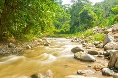 Schöner Paniki-Fluss mit bräunlichem Wasser und dem weichen Fließen lizenzfreie stockbilder