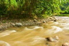 Schöner Paniki-Fluss mit bräunlichem Wasser und dem weichen Fließen lizenzfreies stockbild