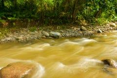 Schöner Paniki-Fluss mit bräunlichem Wasser und dem weichen Fließen stockbild