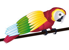 Schöner Papagei Stockfoto