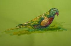 Schöner Papagei auf farbiger Pappe Stockbild