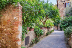 Schöner Park in der Weinlesestadt in Toskana, Pienza Lizenzfreie Stockfotografie