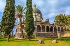 Schöner Park der Zypresse Lizenzfreies Stockfoto