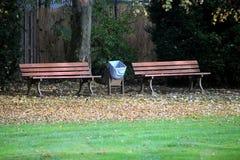 Schöner Park im Herbst in Frankfurt am Main # 2 stockbild
