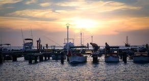 Schöner Pier geschossen auf Palm Beach in Aruba Stockbilder