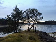 Schöner Punkt auf Schlepper-Insel mit einem ausbreitenden Arbutusbaum stockfotografie