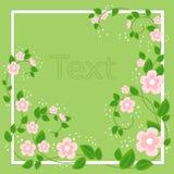 Schöner Rahmen für Fotografie und Text Empfindliche Rosenholzblumen Wiese voll des gelben L?wenzahns Auch im corel abgehobenen Be lizenzfreie abbildung