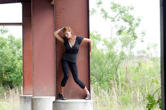 Schöner Redhead, der auf Spalte (2) steht Stockfotografie