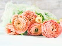 Schöner rosa Ranunculusblumenstrauß auf Türkis Stockbilder