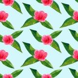 Schöner rosaroter Blumenhibiscus mit grünen tropischen Blättern Nahtloses Muster Hand gezeichnete Aquarellillustration vektor abbildung