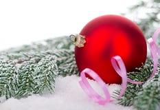 Schöner roter Weihnachtsball auf eisigem Tannenbaum Eine Abbildung einer blauen Blumenverzierung mit Schatten Stockfotografie