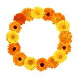 Schöner runder mit Blumenrahmen stockbilder