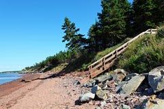 Schöner sandiger Strand lizenzfreies stockbild
