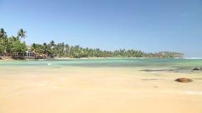Schöner sandiger Strand in Sri Lanka stock video