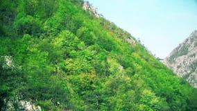 Schöner Schlucht-Durchgang, Hügel und Wasser stock footage