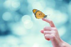 Schöner Schmetterling stockfotografie
