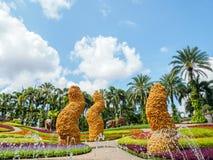 Schöner Schmetterlings-Hügel an tropischem botanischem Garten Nong Nooch Lizenzfreie Stockfotografie