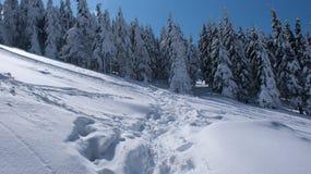 Schöner Schnee Stockbilder