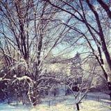 Schöner schneebedeckter Tag stockfoto