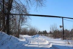 Schöner schneebedeckter Waldkältewinter Lizenzfreie Stockfotografie