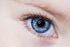 Schöner Schuss des blauen Auges Makro Stockfotos