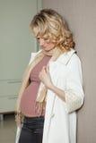 Schöner schwangerer Blick der Frau zu Hause auf die Kamera Stockbild