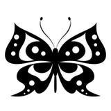 Schöner schwarzer Schmetterling, lokalisiert auf einem Weiß Lizenzfreies Stockfoto