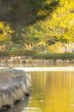 Schöner See in den Springfield Seen am Nachmittag Stockbild