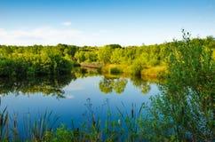 Schöner See im Sommer Stockfotos