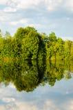 Schöner See im Sommer Lizenzfreie Stockfotos