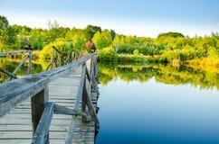 Schöner See im Sommer Lizenzfreies Stockbild