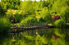 Schöner See im Sommer Stockbilder